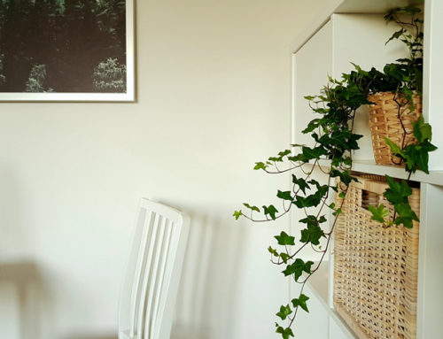 How to Make the Most of Your Living Space on a Budget